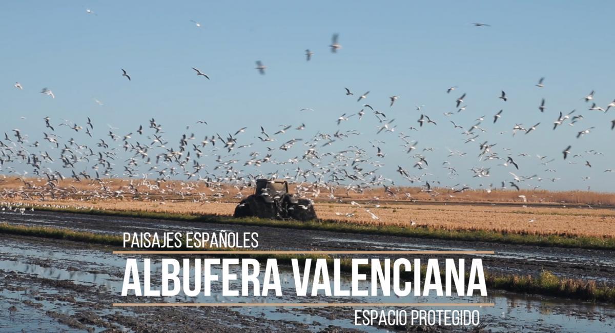 Fangueando en el Parque Naturalla de la Albufera de Valencia.